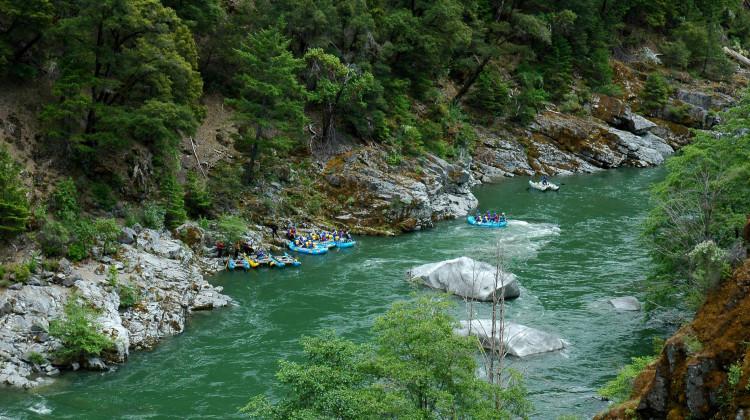California Salmon Rafting Safari - Rafts Above Last Chance Rapid