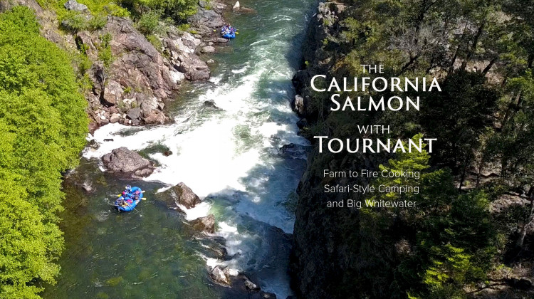 The Cal Salmon with Tournant – Wilderness Gourmet River Safari