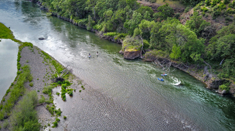 Rogue River Stand Up Paddleboarding - Ashland Oregon Day Trips